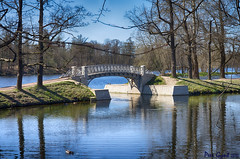 Bridge in the Park. Gatchina.