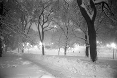 022169 05 (ndpa / s. lundeen, archivist) Tags: park trees winter blackandwhite bw snow storm 1969 film monochrome boston night 35mm ma lights evening blackwhite path massachusetts nick snowstorm nighttime 1960s february common snowfall blizzard bostoncommon beaconhill snowbank winterstorm dewolf heavysnow bigsnow coveredinsnow recordsnowfall recordsnow nickdewolf photographbynickdewolf