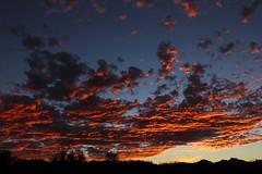 Sunset 10 29 2013 #02 (Az Skies Photography) Tags: sunset red arizona sky orange cloud sun black rio set skyline clouds canon skyscape eos rebel gold golden twilight october dusk salmon az rico 29 arizonasky arizonasunset 2013 riorico rioricoaz t2i 102913 arizonaskyline canoneosrebelt2i arizonaskyscape 10292013