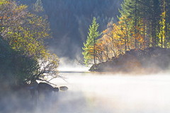 Light in the Mist (PeterYoung1.) Tags: uk autumn trees mist nature water beautiful fog landscape scotland colours scenic atmospheric ard lochard peteryoung1