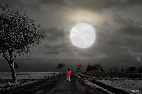 Walk under the full moon