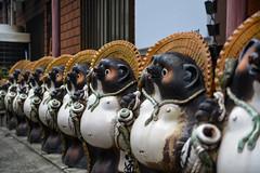 Tanuki Parade (AnotherSaru - Limited mode) Tags: statue tokyo row parade tanuki  nippon asakusa nihon   japa raccoondog   taitku taitoward