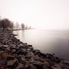 St. Lawrence River Shoreline (Richard Pilon) Tags: november autumn ontario canada fall water rain fog river stlawrenceriver iphone iphoneography hipstamatic