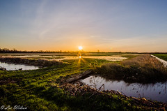 Flooded Sunrise 1 (Lee532) Tags: new storm holland sunrise nikon flooding north lincolnshire surge humber d5100
