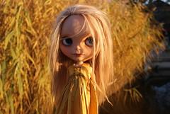 Moss in Pumpkinbelle <3