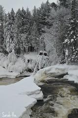 (Sarah-Vie) Tags: hiver rivire paysage dsc stpaulin 0028 rivireautremble