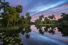 Magical Fairchild. Miami, FL. Fairchild Tropical Botanic Garden. (pedro lastra) Tags: usa garden miami sony tropical botanic fairchild floria fairchildtropicalbotanicgarden a7r