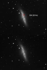 M82 supernova before after (chris_swatton) Tags: auto uk england sky nova night garden stars photography star signature tripod bisque cigar super hampshire apo rob mount miller galaxy astrophotography software series astronomy supernova triplet mx equatorial paramount fareham filterwheel tmb robotic lodestar f7 m82 oag lrgb atik guider 130mm autoguider computerised 314l tmb130ss megamount tri36m