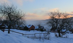Mist is falling ... (:Linda:) Tags: snow schnee germany thuringia village bürden woodenfence dusk mist night sunset apfelbaum cloudysky