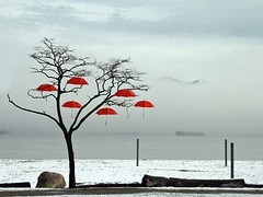 Rainblossom (losy) Tags: winter red snow beach spanishbanks umbrellas schirme losy flickrjobdiff vision:outdoor=0974 vision:sky=0743 rainblossomproject rainbowblossoms losyphotography