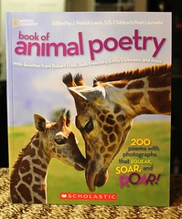 Book of Animal Poetry (Vernon Barford School Library) Tags: new school animal animals children reading book high poetry library libraries reads books read paperback national cover junior covers bookcover poems middle vernon recent geographic bookcovers nonfiction poets paperbacks nationalgeographic barford softcover vernonbarford softcovers 9780545565554