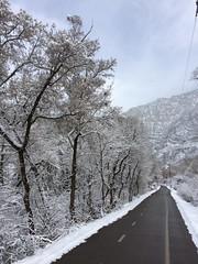 IMG_2219 (augiebenjamin) Tags: winter provocanyon mountains orem provo lindon utah snow clouds trees sky byu brighamyounguniversity art