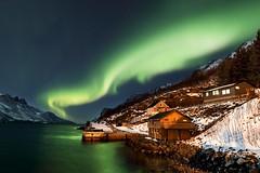 Aurora Borealis (midlander1231) Tags: northernlights auroraborealis aurora norway northernnorway ersfjordbotn tromso landscape light fiord fiords nature