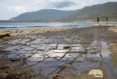 Formation (Keith Midson) Tags: tessellatedpavement tessellated formation rocks shore shoreline coast coastline coastal sea ocean tasmanpeninsular tasmania water people tourists pose posing