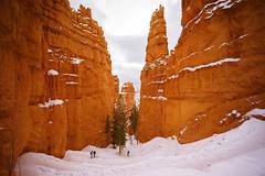 DSC09285 (mingzkl) Tags: brycecanyon winter leica35mmf2summicron redrock