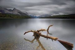 Ashes in the Sky (Zur@imiAbro@d) Tags: landscape malignelake jaspernationalpark nationalpark lake mountains clouds serene tranquil branch longexposure 10stops alberta canada zurimiabrod malignemountain overcast