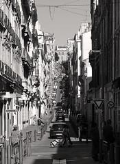 Marseille - rue Grignan (Maxofmars) Tags: france francia frankreich frankrijk europe europa ville city ciudad citta stadt rue street calle strasse strada via straat carrer marseille marsella marsiglia marseilles provence provenza provença