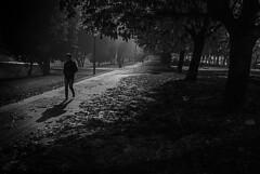 NOCTÁMBULA SOLEDAD (oskarRLS) Tags: night noche walk mood street calle s solitude soledad nocturna alone