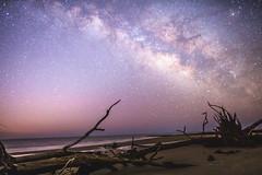 Milky Way Roots (sparkyloe) Tags: milky way milkyway galaxy glow explore explored sony metabones beach island saint helena light roots image photo