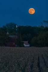 Lunar Eclipse (MP Mitchell) Tags: bloodmoon lunar moon september iowa seminole valley cedarrapids