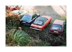 Somewhere With The Dogs (Punkroyaltiger) Tags: nikon film analog nikonf801 kodak portra cars