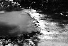 Natural Light (vokasional) Tags: nikkor1855mm
