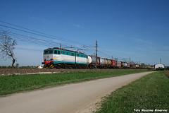 Il 200! (Massimo Minervini) Tags: e655 e655200 mir mercitalia trenomerci intermodale cassemobili fs cargo lineamilanobologna fiorenzuola primavera piacenza ferrovia canon400d caimano