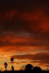 Sunset 3 19 2017 #04 (Az Skies Photography) Tags: sun set sunset dusk twilight nightfall cloud clouds sky skyline skyscape rio rico arizona az riorico rioricoaz arizonasky arizonaskyline arizonaskyscape arizonasunset red orange yellow gold golden salmon black canon eos rebel t2i canoneosrebelt2i eosrebelt2i march 19 2017 march192017 31917 3192017