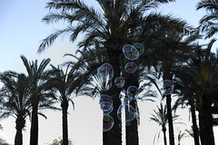 bubble (alfonsovalgar) Tags: playa paseo marítimo torremolinos fujifilm xt2