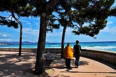 the colors of life... (sicca85) Tags: nikon nikond7200 iamnikon nikkor 1750 francia france laciotat mare sea beach alberi albero allaperto vita mamma figlia cielo azzurro