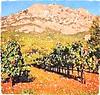 Ste Victoire & vineyards
