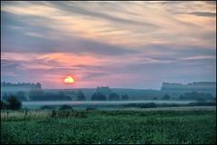 Рассвет / Dawn (Павел Ныриков) Tags: природа пейзаж рассвет небо поле туман nature landscape dawn sky field fog