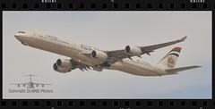 A6-EHF (EI-AMD Aviation Photography) Tags: omaa auh eiamd photos aviation airport abu dhabi uae airbus a340 hgw a6ehf etihad airways