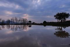 淡水水中央 (Lavender0302) Tags: 夕陽 淡水水中央 淡水 新北市 台灣 taiwan sunset bluehour