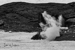 Flatrock IceSurf-17-2 (Ian L Winter) Tags: flatrock nature newfoundland driftice surf newfoundlandandlabrador canada ca