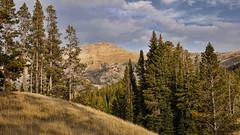 (jtr27) Tags: dsc00434e jtr27 sony alpha nex6 nex emount mirrorless sigma 30mm f28 exdn sportsman lake parkcounty montana yellowstone national park landscape mountain