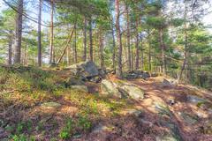 Ravneberget - Rural fortress (Bjorn-Erik Skjoren) Tags: landscape ravneberget hdri landskap christin hunnebunnen kulturminne stenmur bygdeborg