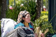 People Quito, Ecuador (DROSAN DEM) Tags: woman mujer etnia etnics girl vendedora ramos de semana santa quito ecuador people gente rostro cara face