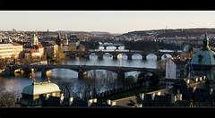 Prague bridges shortly before sunset (kalakeli) Tags: letná letnablick brücken bridges river fluss rivers flüsse vltava moldau wasser water goldenlight letna prag praha prague march märz 2017