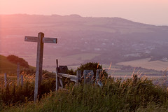 South Downs Way Sunset (suerob) Tags: sussex south downs way swanborough hill firle beacon signpost marker hills sunset golden chalk countryside scenery southdownsnationalpark landscape scene grassland england