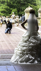 DPH -0010 (Darren P. Hanson) Tags: dphphotography nyc streetphotography urban bride bridesmaid gown centralpark manhattan city citylife bigapple