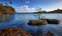 Early spring, Norway (Vest der ute) Tags: xt2 norway rogaland røyksund spring water waterscape landscape lake tree rocks sky clouds fav25 fav200