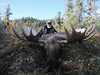 Alaska Dall Sheep Hunt & Moose Hunt 10