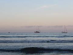 5898 (yolyes) Tags: canon canonistas canonmexicana playa beach ixtapa guerrero mexico visitmexico blancoynegro wb walkingmexico fotografos