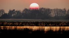 SCHILDWOLDE, THE NETHERLANDS (pwitterholt) Tags: sunset zonsondergang schildwolde troegwold naturereserve natuurgebied natuur reflection reflectie groningen avond avondlicht avondzon weerspiegeling canon canonsx40 canonpowershotsx40hs canonpowershot