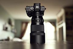 The Dream Team (Joseph K Photography) Tags: photo photography photos professional sigma art 135art bokeh gear sony a7r2 a7rii alpha