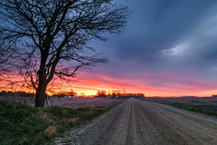 Take Me Home (tquist24) Tags: goshen hdr indiana nikon nikond5300 clouds dirtroad farm geotagged longexposure morning orange road silhouette sky sunrise tree unitedstates