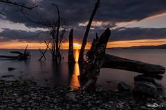 Lago Trasimeno, Monte del Lago (--marcello--) Tags: longexposure lake water nature umbria italy landscape sunset tramonto trasimeno clouds sky montedellago