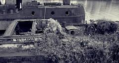Repos forcé (Un jour en France) Tags: janville rivière bateau péniche cimetière