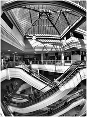 Up and down (Thecameralooksbothways) Tags: blackandwhite monochrome mono olympus wideangle wideboys wide samyangcsc75mmf35umcfisheyemft fisheye samyang75mm samyang snapseed ba
